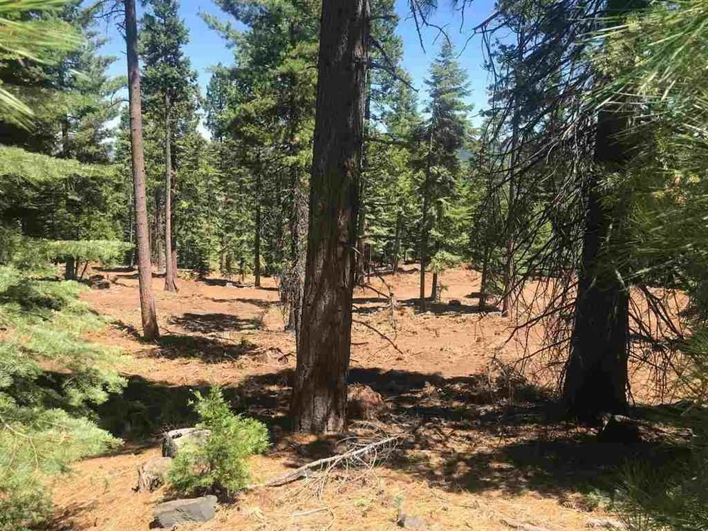 Acreage for Active at 103-020-022 Clifford Drive Lake Almanor, California 96137 United States