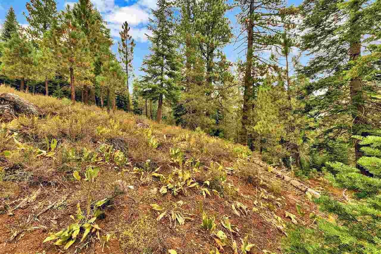 16. Residential Lot at 142 Rock Garden Court Olympic Valley, California 96146 United States