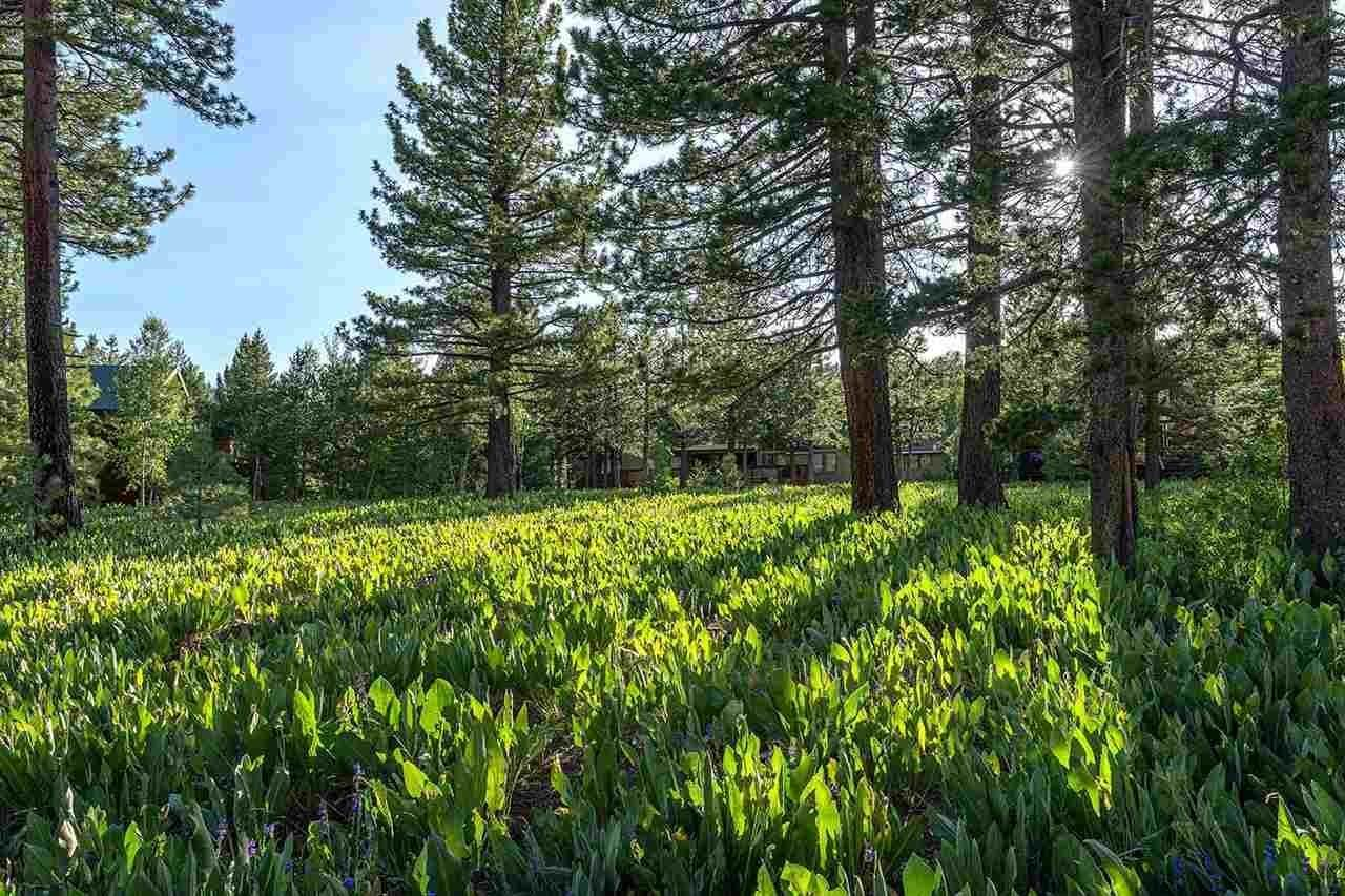 9. Single Family Homes for Active at 17030 Skislope Way Truckee, California 96161 United States