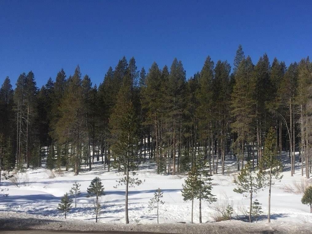 Residential Lot at 12173 Northwoods Boulevard Truckee, California 96161 United States