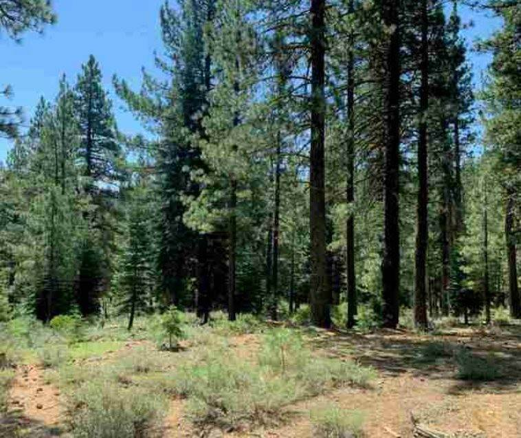 Residential Lot at 12721 Granite Drive Truckee, California 96161 United States