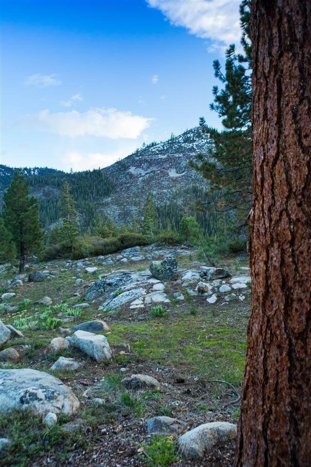 15. Land for Active at 16400 Donner Pass Road Truckee, California 96161 United States