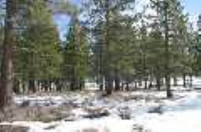 Residential Lot at 13313 Snowshoe Thompson Truckee, California 96161 United States