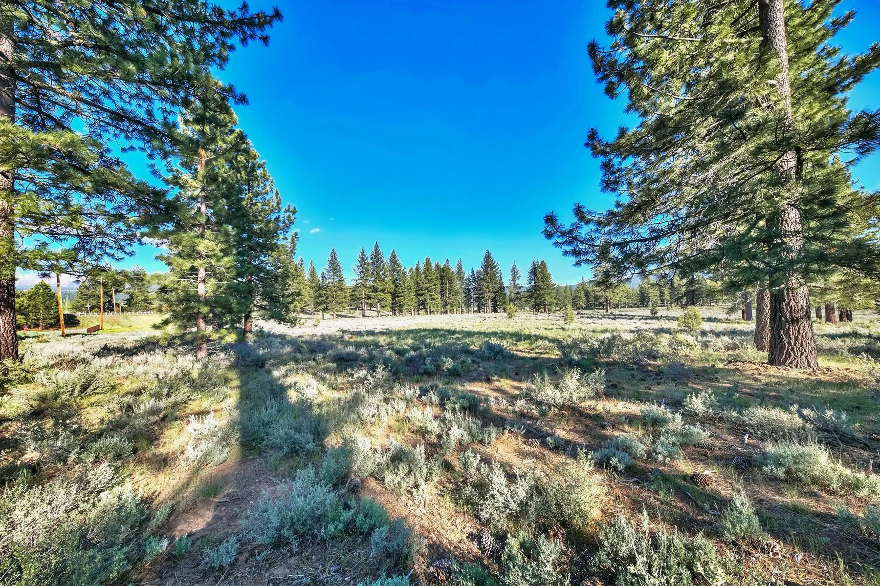 7. Land for Active at 9701 North Shore Boulevard, Truckee, CA 9701 North Shore Blvd., 9701 Highway 267 Truckee, California 96161 United States