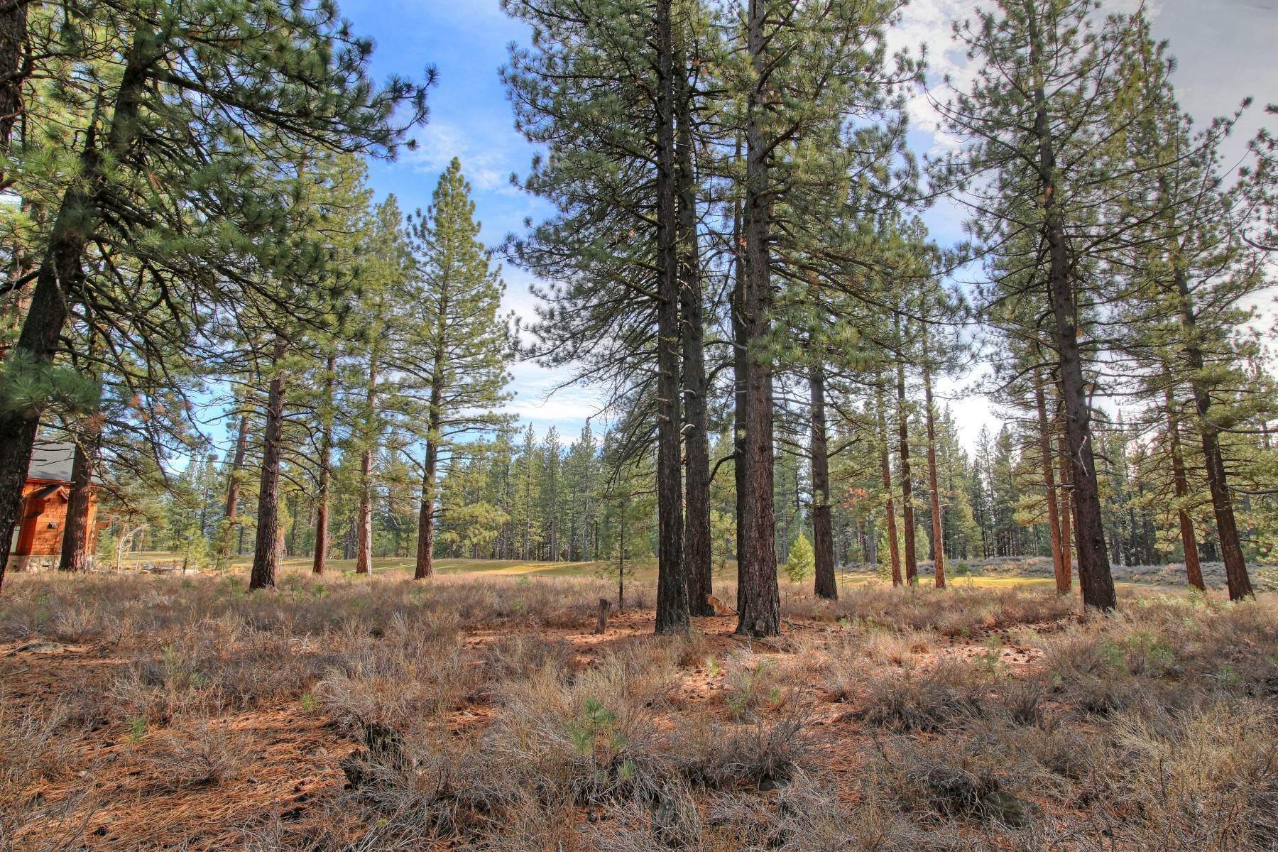7. Land for Active at 12666 Caleb Drive, Truckee California 96161 12666 Caleb Drive Truckee, California 96161 United States