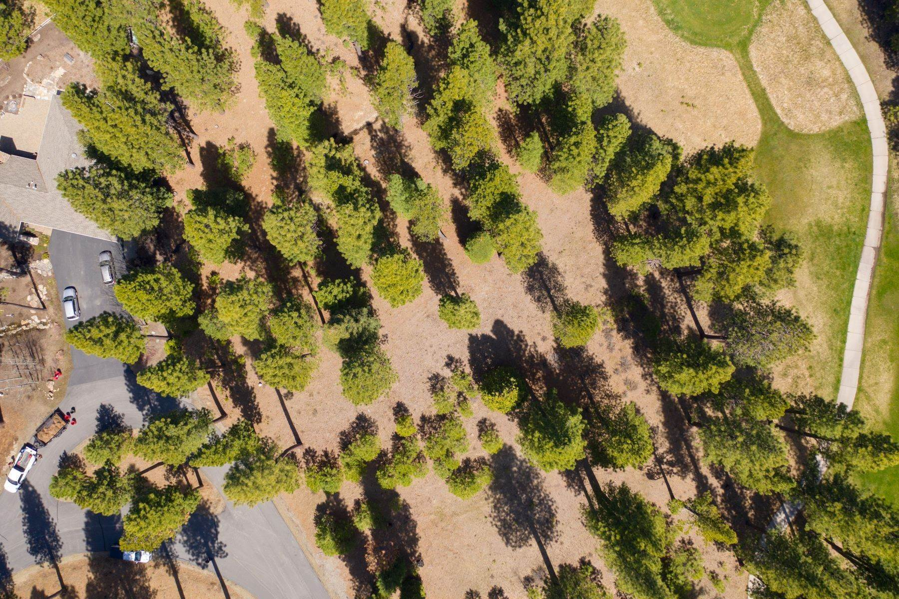4. Land for Active at 148 Black Bear Trail, Clio, CA 96106 148 Black Bear Trail Clio, California 96106 United States