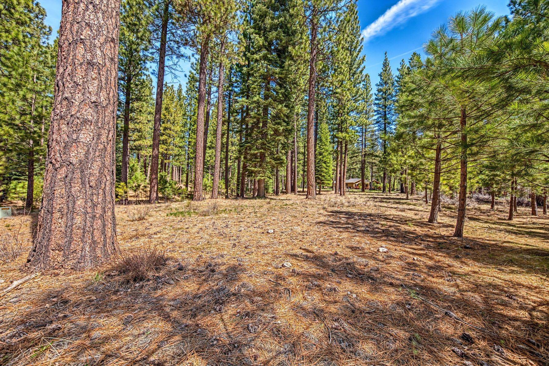 5. Land for Active at 148 Black Bear Trail, Clio, CA 96106 148 Black Bear Trail Clio, California 96106 United States