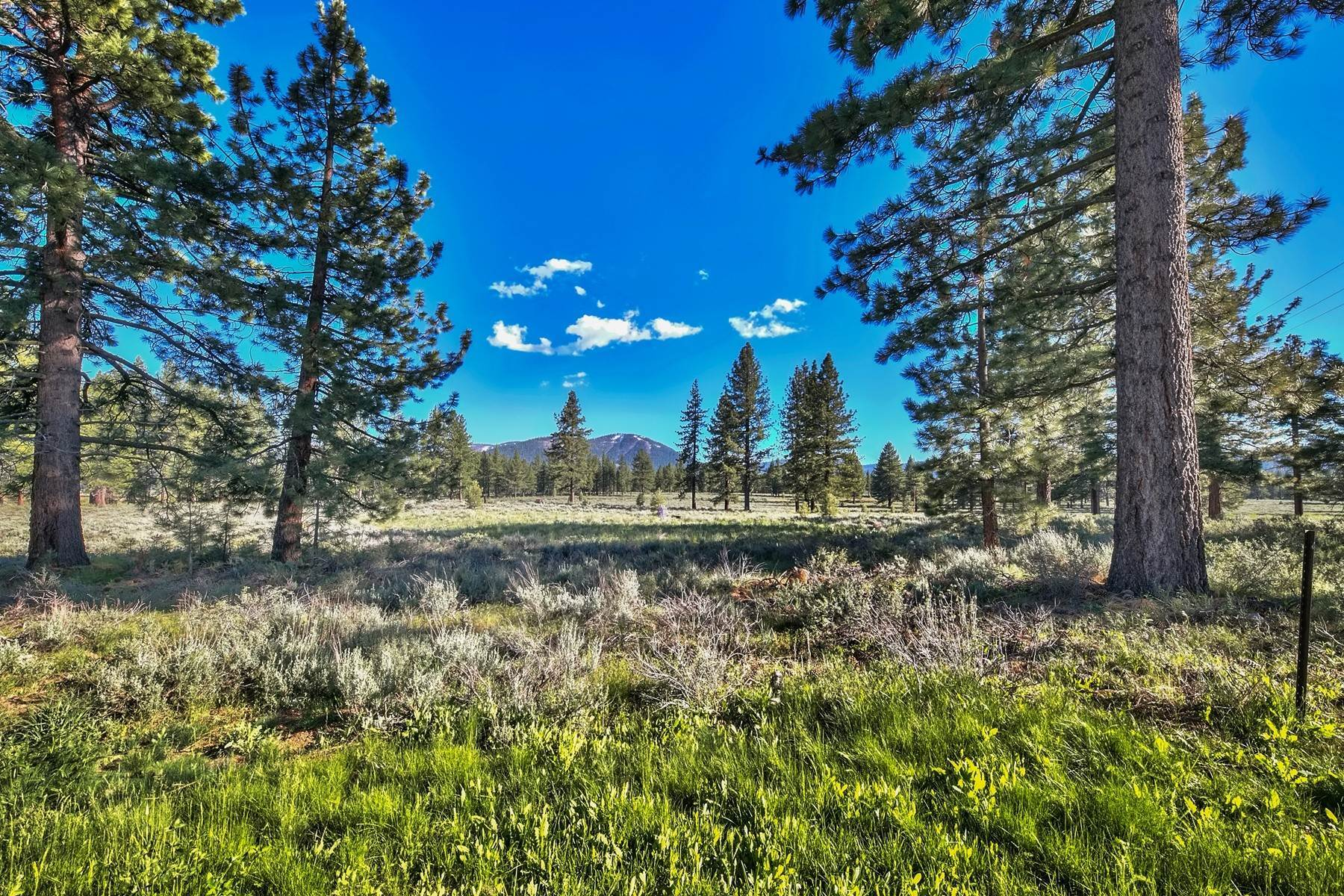 15. Land for Active at 9701 North Shore Boulevard, Truckee, CA 9701 North Shore Blvd., 9701 Highway 267 Truckee, California 96161 United States
