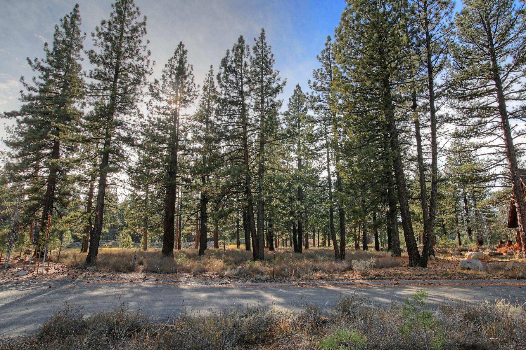 14. Land for Active at 12666 Caleb Drive, Truckee California 96161 12666 Caleb Drive Truckee, California 96161 United States