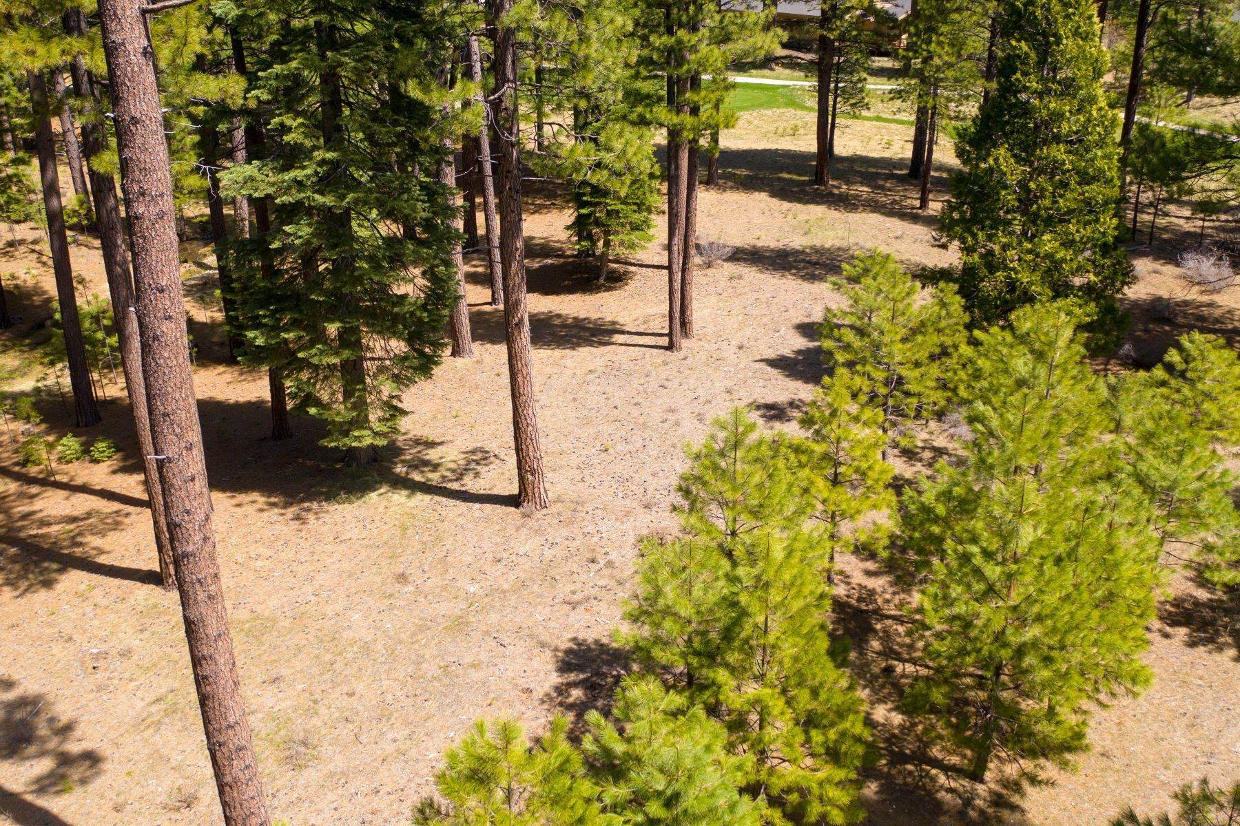 9. Land for Active at 148 Black Bear Trail, Clio, CA 96106 148 Black Bear Trail Clio, California 96106 United States