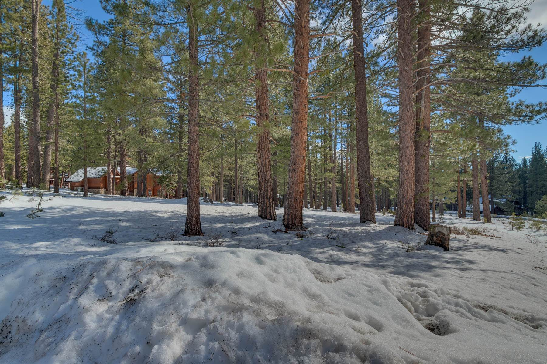 Property for Active at 11651 Bottcher Loop Truckee, California 96161 United States