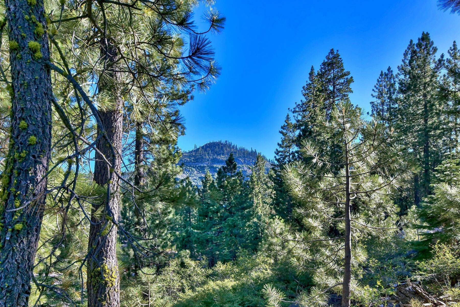 5. Land for Active at 15900 Donner Pass Rd , Truckee, CA 96161 15900 Donner Pass Rd Truckee, California 96161 United States