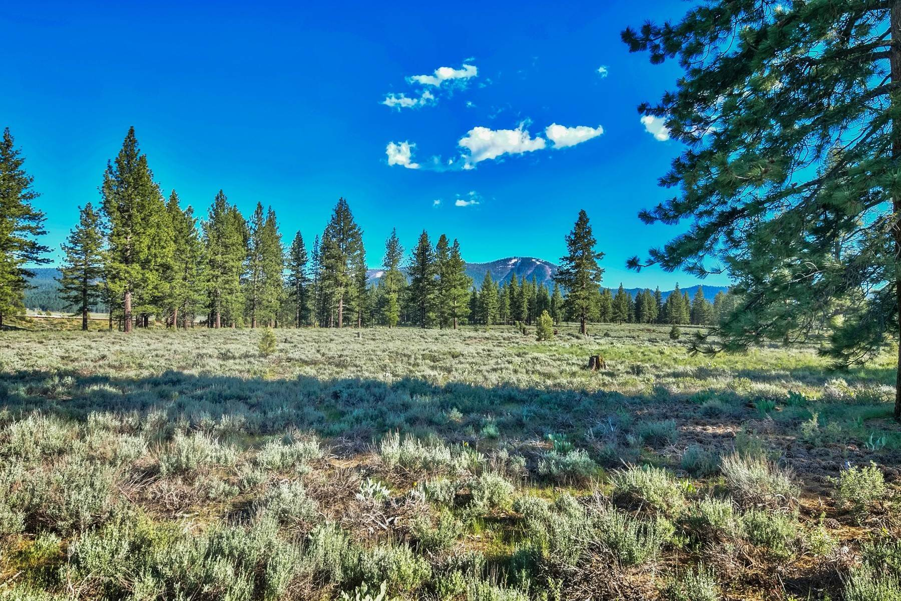 14. Land for Active at 9701 North Shore Boulevard, Truckee, CA 9701 North Shore Blvd., 9701 Highway 267 Truckee, California 96161 United States