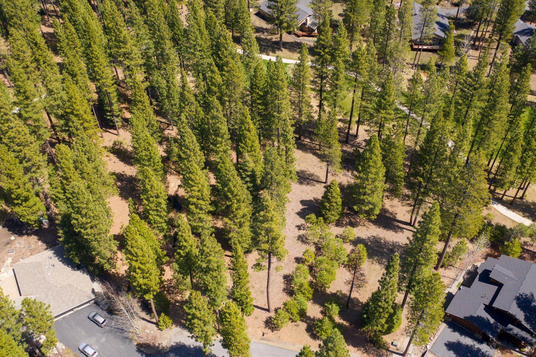 7. Land for Active at 148 Black Bear Trail, Clio, CA 96106 148 Black Bear Trail Clio, California 96106 United States