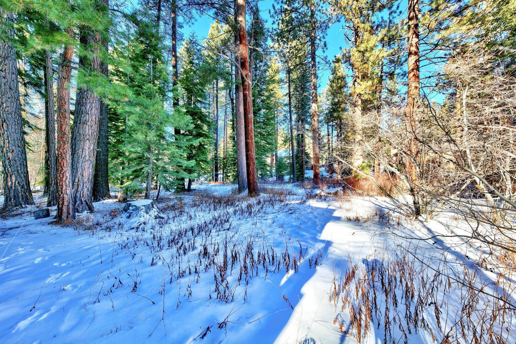 13. Single Family Homes for Active at Charming Tahoe Cabin 135 Mayhew Circle Incline Village, Nevada 89451 United States