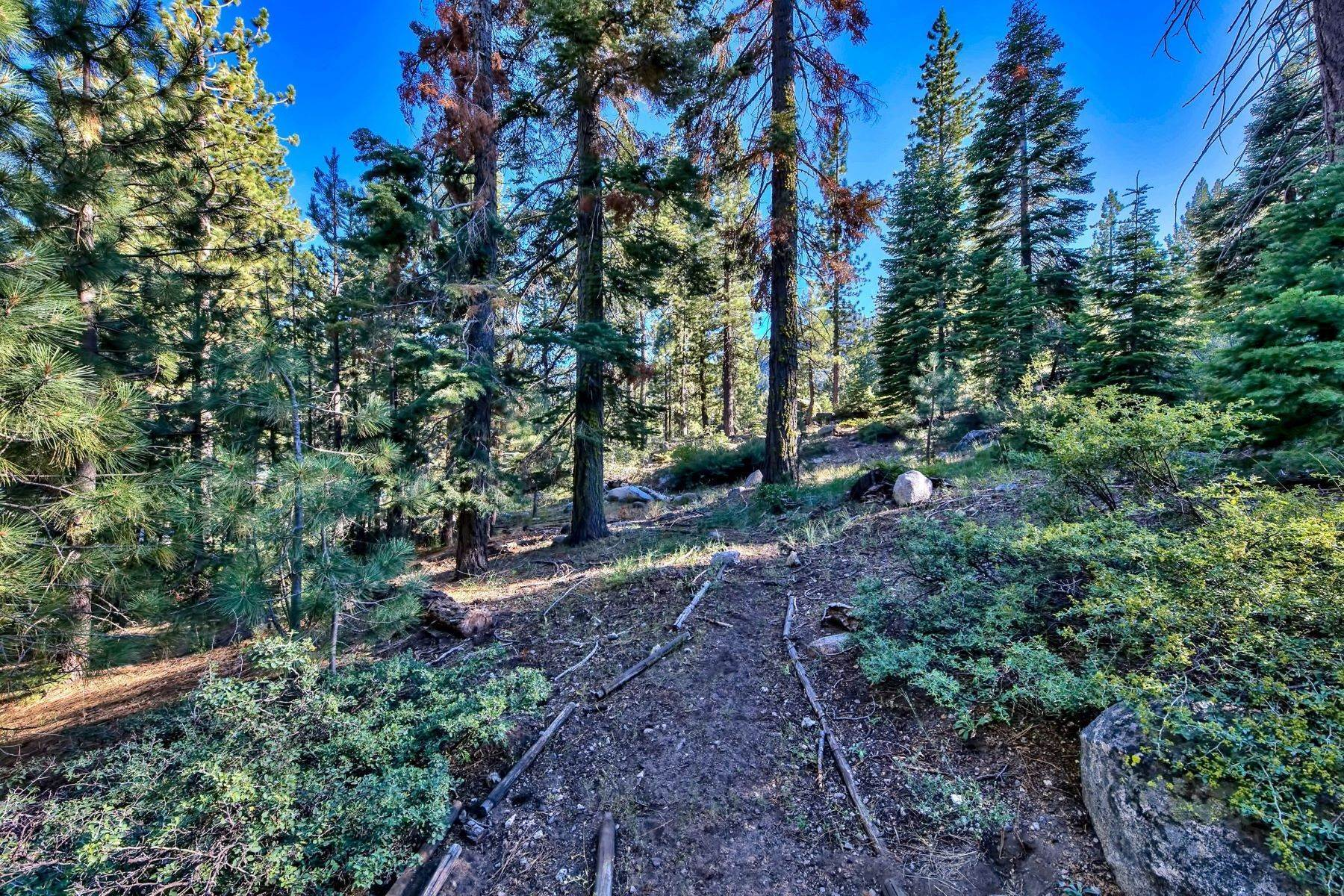 10. Land for Active at 15900 Donner Pass Rd , Truckee, CA 96161 15900 Donner Pass Rd Truckee, California 96161 United States