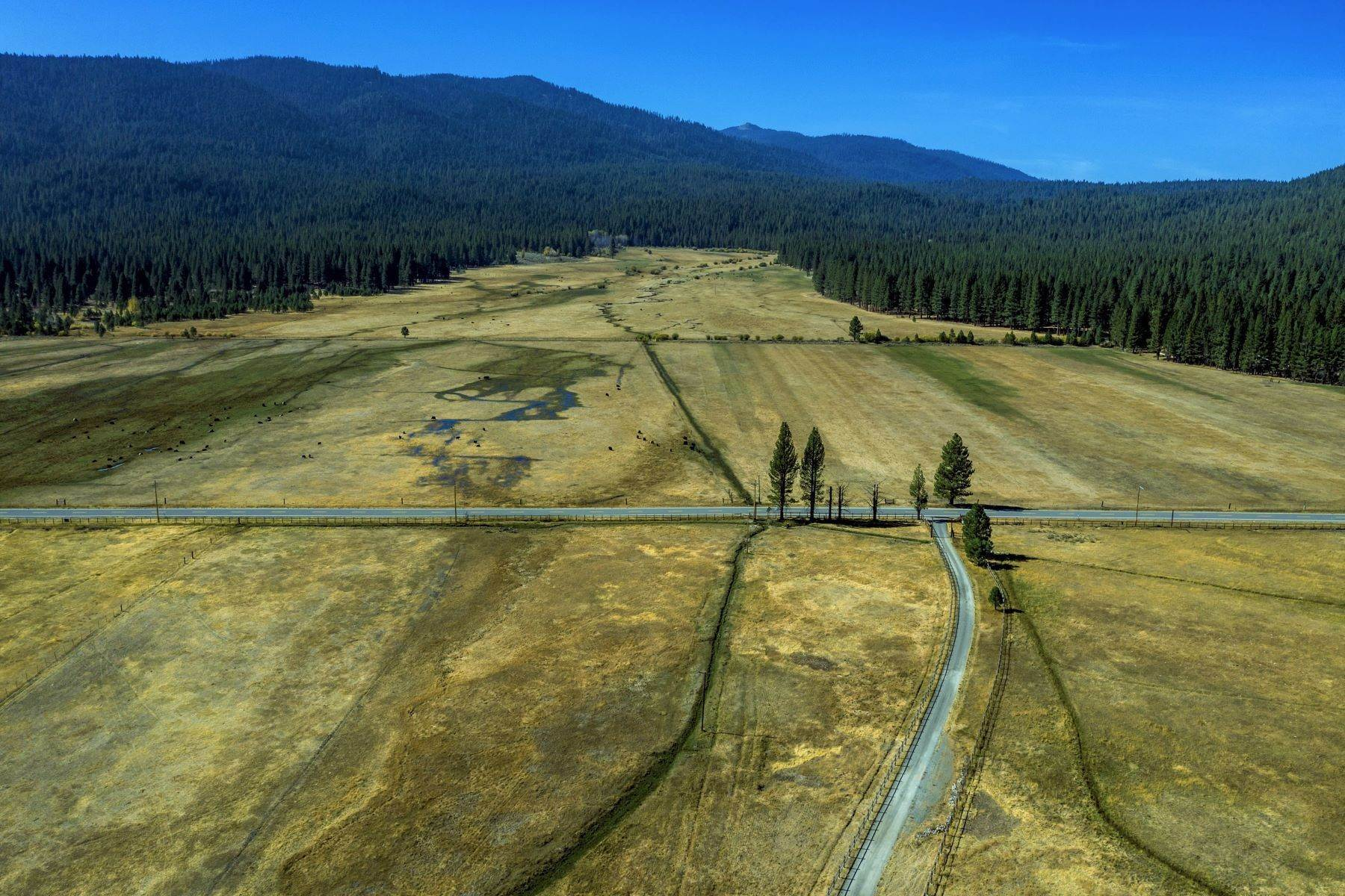 6. Single Family Homes for Active at Sierra Valley Splendor on 532 Acres 22440 Highway 89 Calpine, California 96126 United States