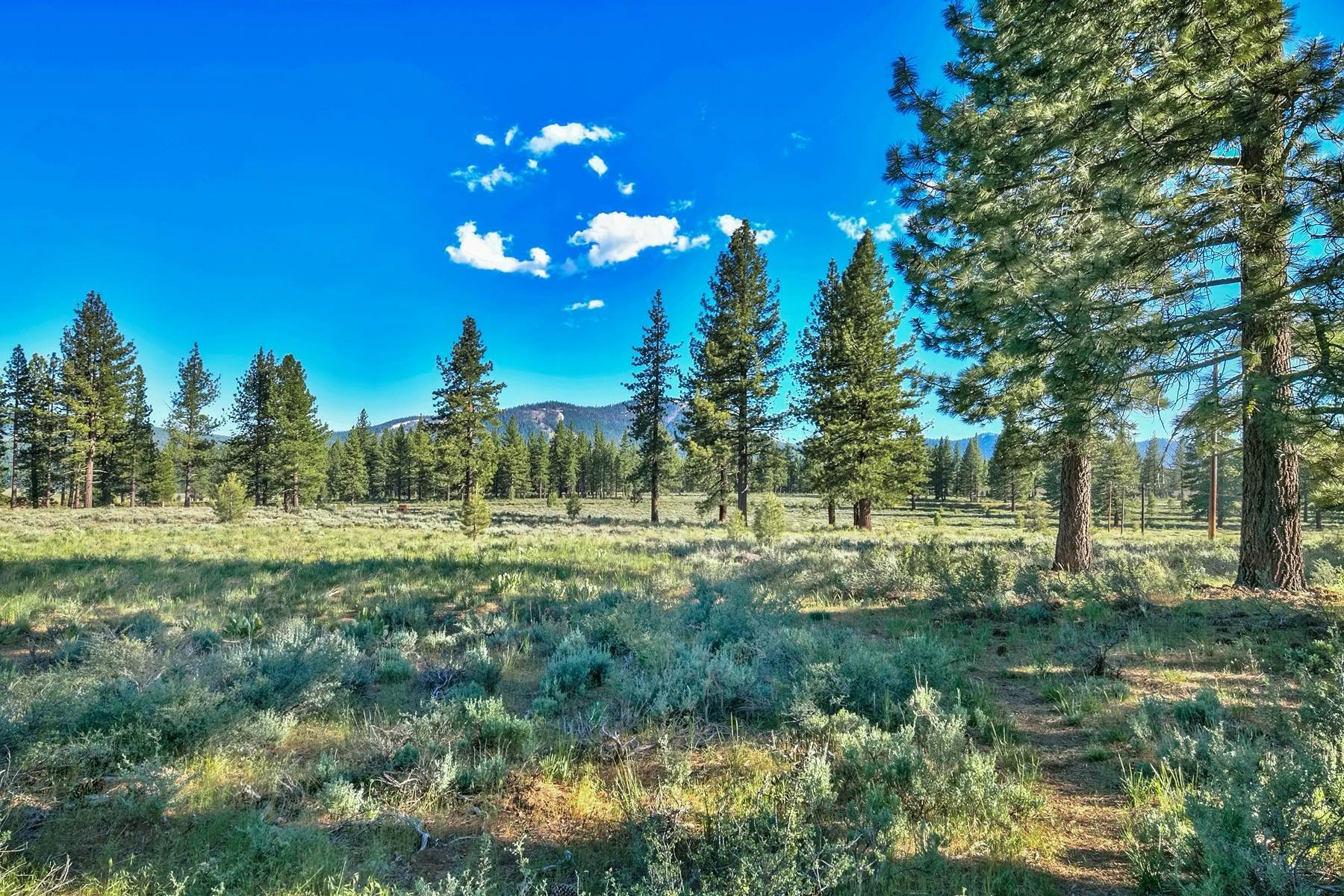 16. Land for Active at 9701 North Shore Boulevard, Truckee, CA 9701 North Shore Blvd., 9701 Highway 267 Truckee, California 96161 United States